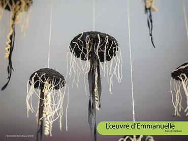 L'œuvre d'Emmanuelle - Banc de méduses